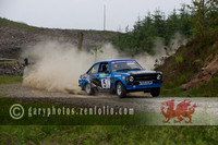 Severn Vally Stages Rally 2014